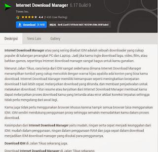 Internet Download Manager (IDM)
