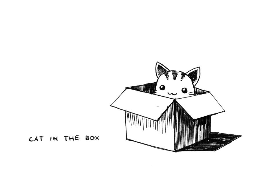 SteamKid Cat In The Box