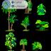 مجموعة بلوكات أشجار bloc بشكل مميز اوتوكاد dwg