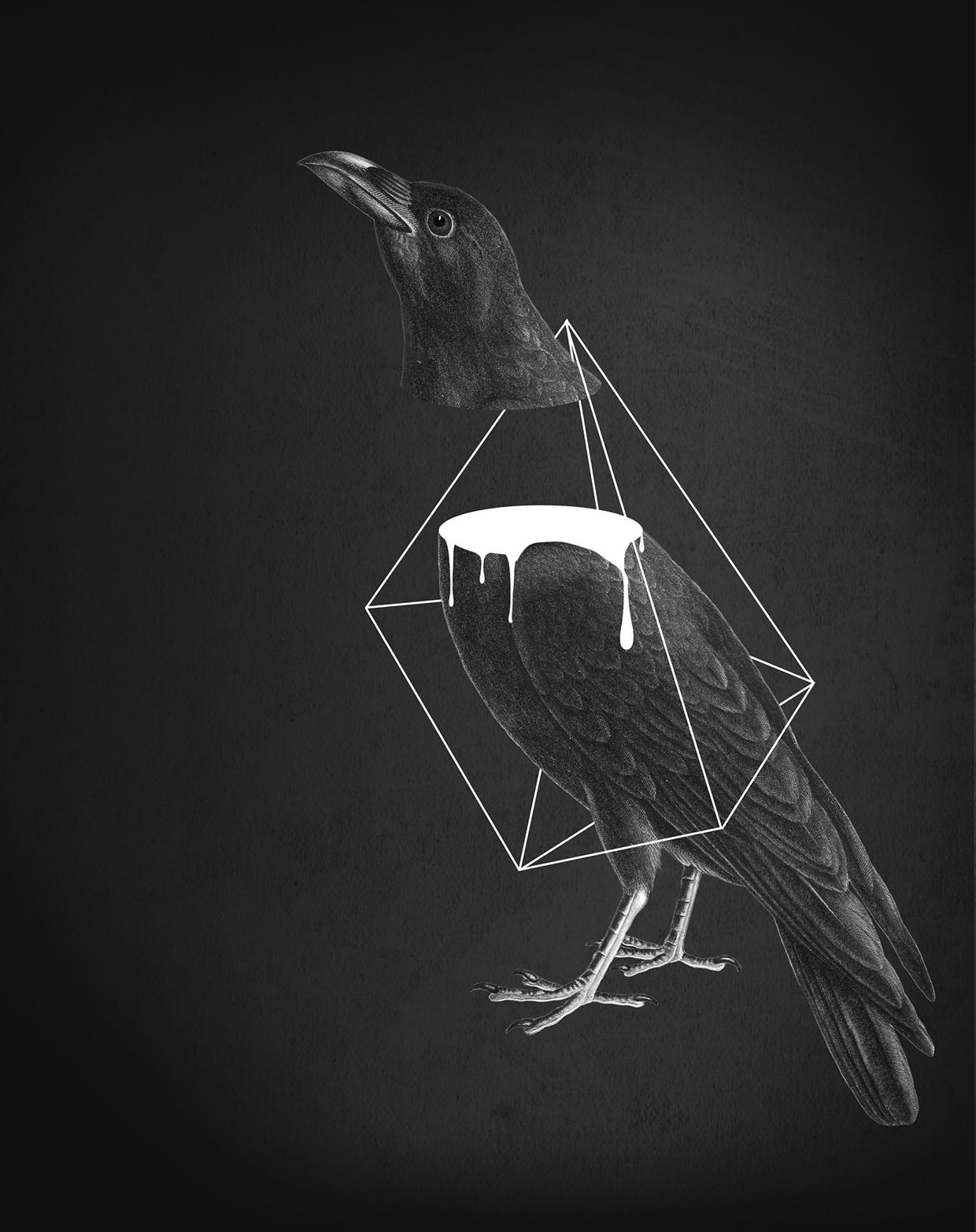 ©Julia Geiser - Collage 2014