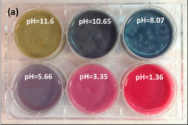 Blue Maize Flour at different pH values