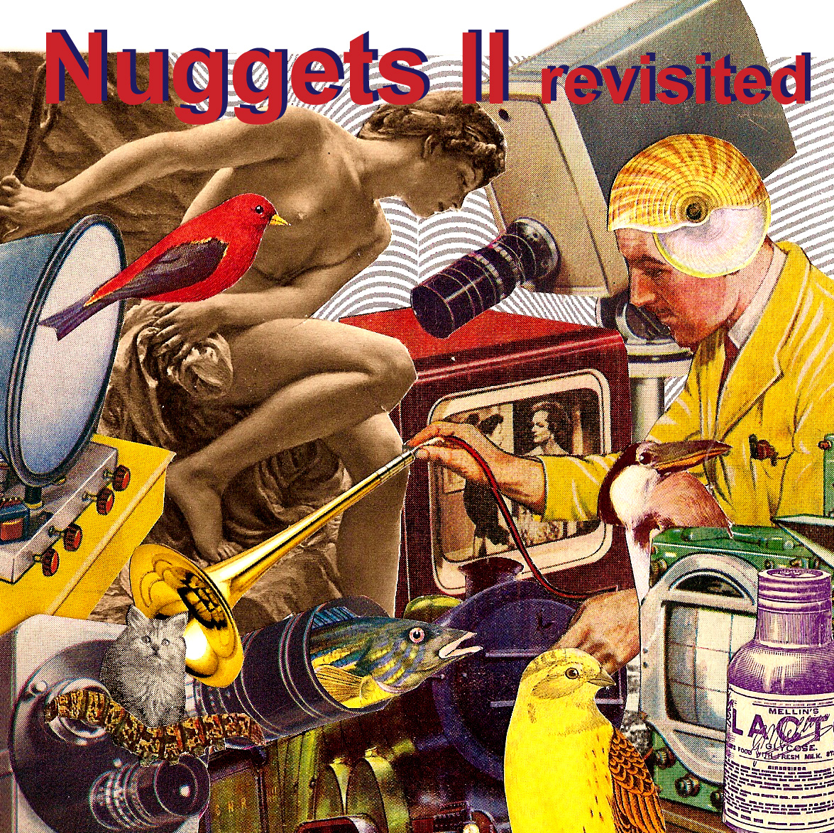 Nuggets Box Set: THE ACTIVE LISTENER: Nuggets II Revisited Track Premiere