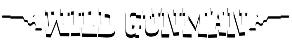 Wild Gunman Demo
