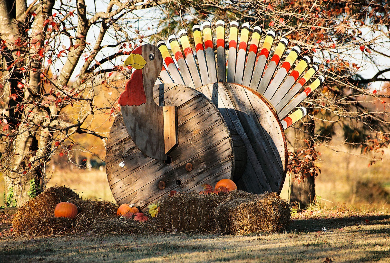 wooden turkey display