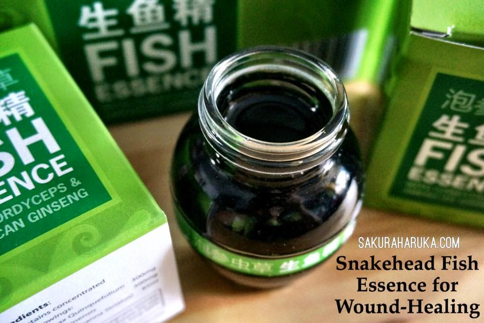 Where to buy snakehead fish in singapore