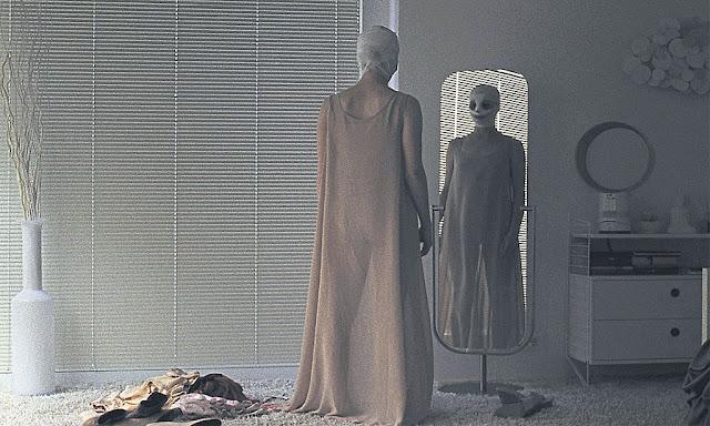 Спокойной ночи, мамочка, Я вижу, Я вижу, австрийский фильм ужасов 2015