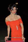 Shilpi Sharma Photos at Green Signal Audio-thumbnail-6