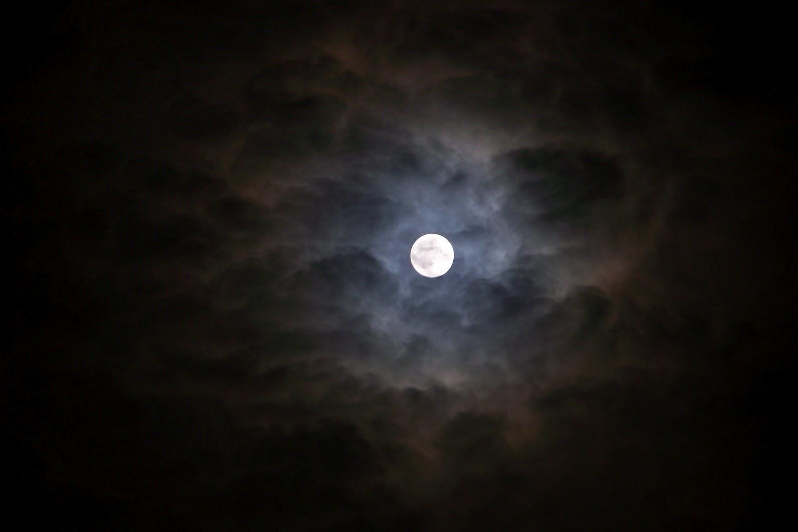 luna de lola fontecha en la sierra de andújar lola me trajo esta luna
