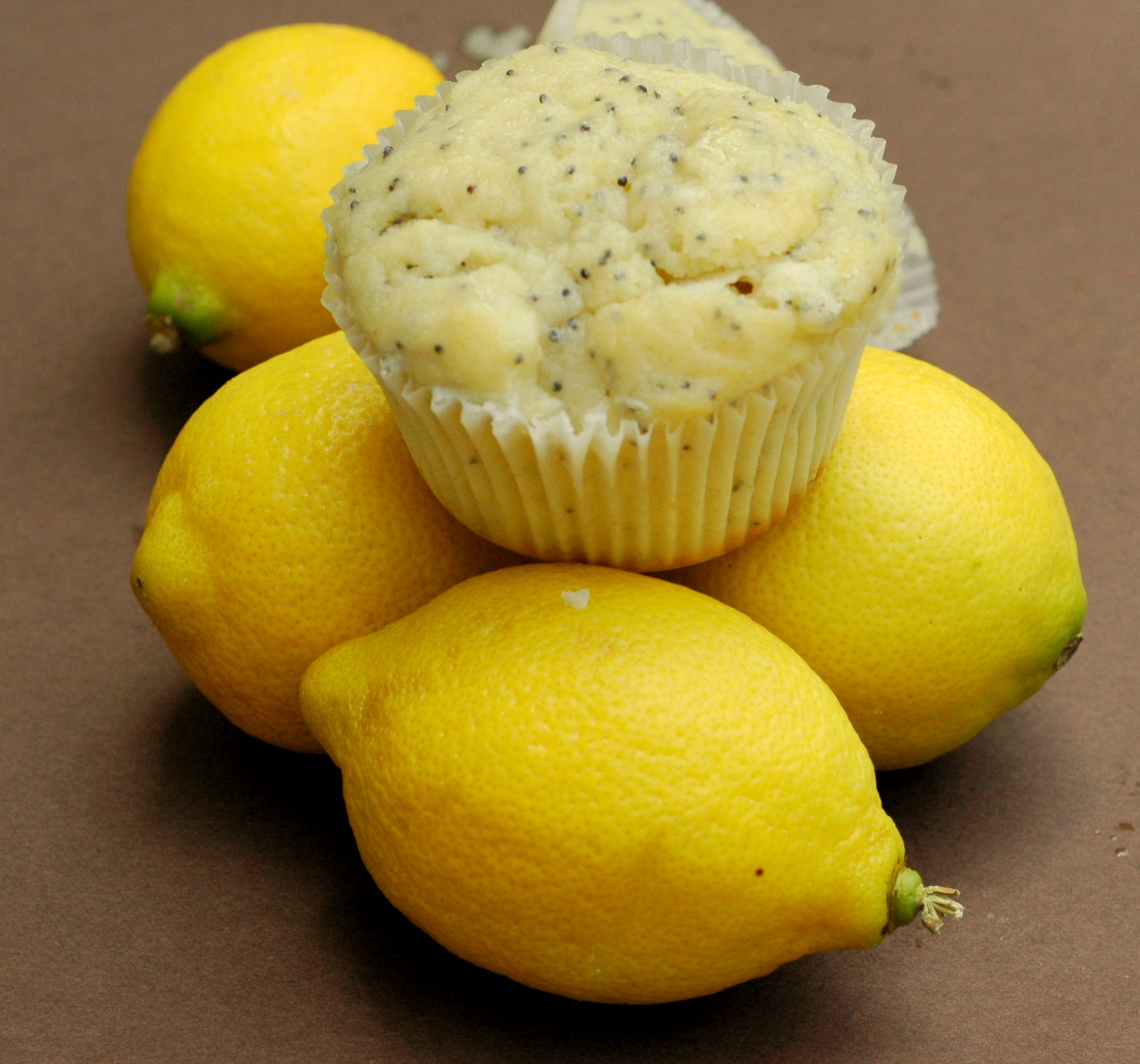 Good Thymes and Good Food: Lemon Poppy Seed Muffins