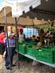 Fábricas Instaladas en Haiti