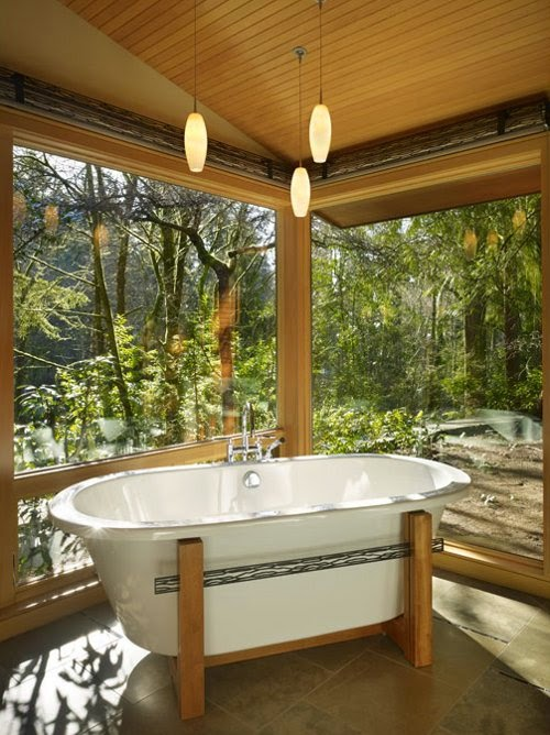 wooden modern house with cozy natural bathtub