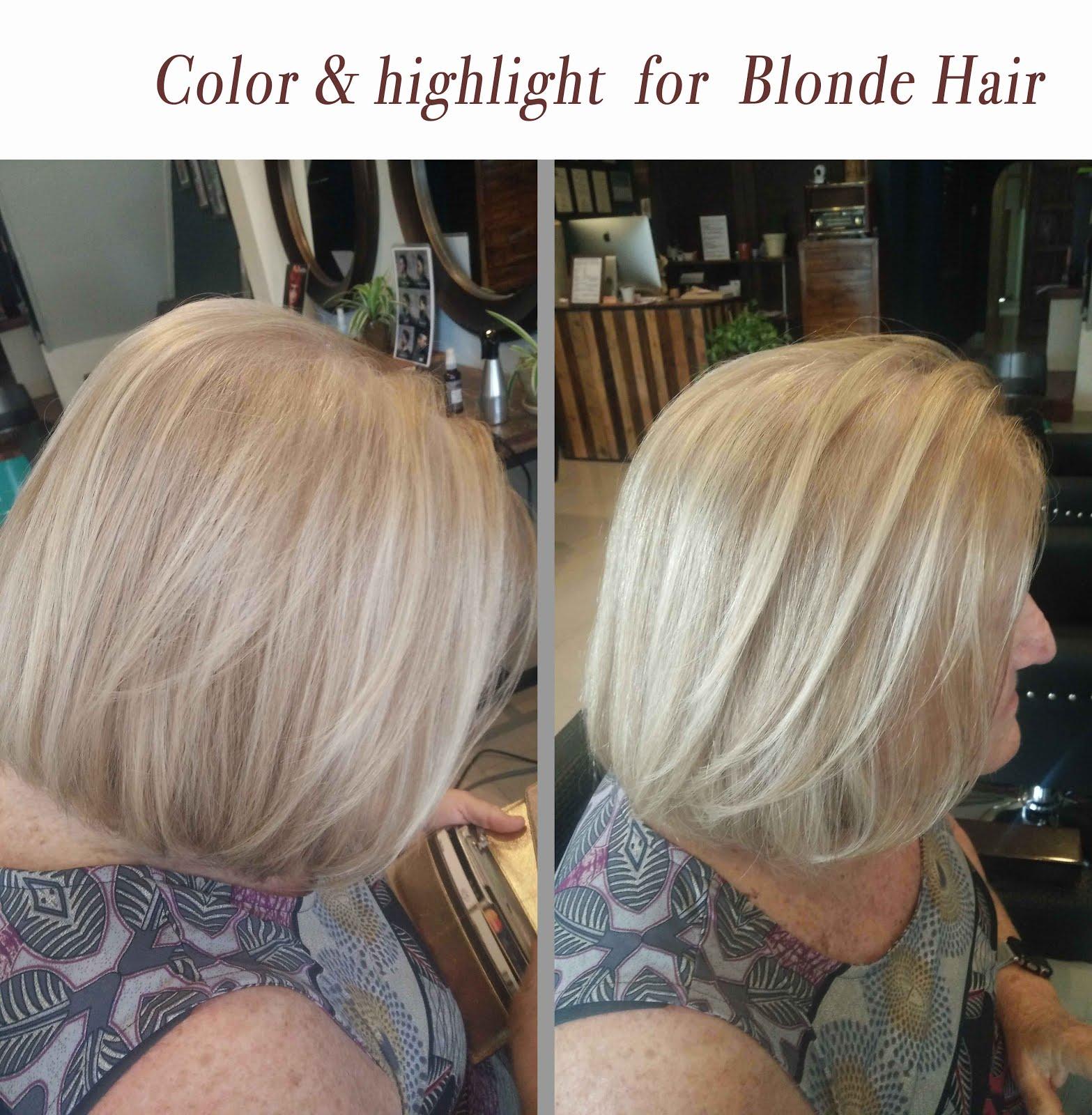Blonde Highlights Blonde Colour Estilo Aveda Salonpenang