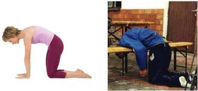 Yoga Positions Vs Liquor Positions Marjayasana+yoga