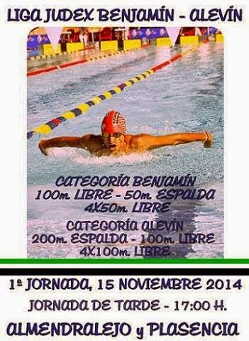 Alonso lozano mi blog noviembre 2014 for Piscina climatizada navalmoral