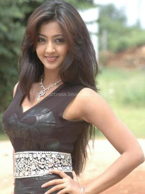 bollywood, tollywood, hot, Aindrita, ray, latest, hot, photos