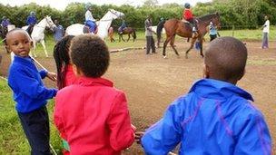 equitazione cavalli kenya