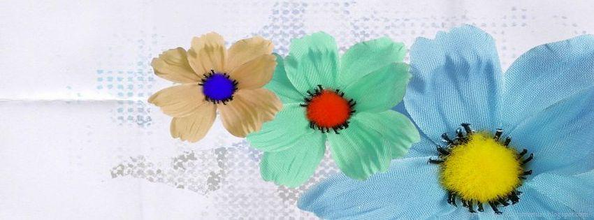 meilleur photo couverture facebook fleurs photo et image couverture facebook. Black Bedroom Furniture Sets. Home Design Ideas