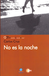 """""""No es la noche"""" de Carlos Cruz."""