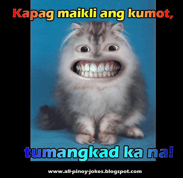 Jokes One Liners All Pinoy Blogspot Funny
