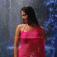 Anuksha hot images in pink saree