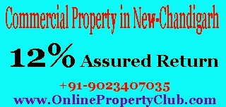 Commercial Property Mullanpur