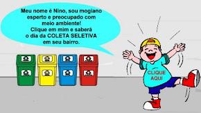 COLETA SELETIVA- CLIQUE NO NINO