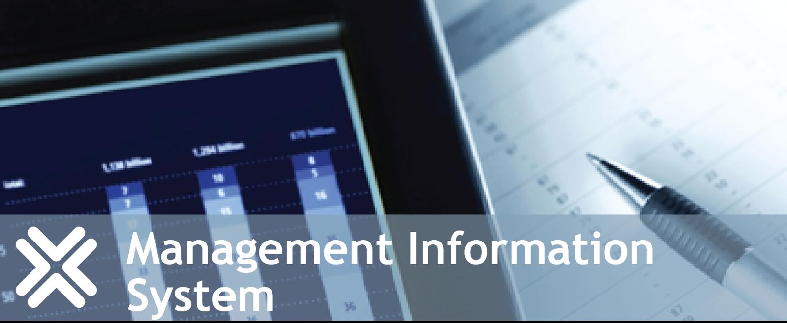 management information system 2 essay