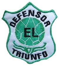 """"""" EL ESCUDO DEL CLUB"""""""