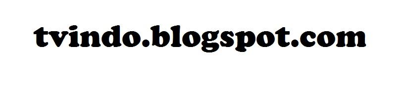 Blog TVINDO