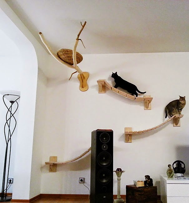 Overhead Cat Playgrounds With Walkways