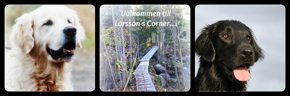 Välkommen till Larssons Corner...