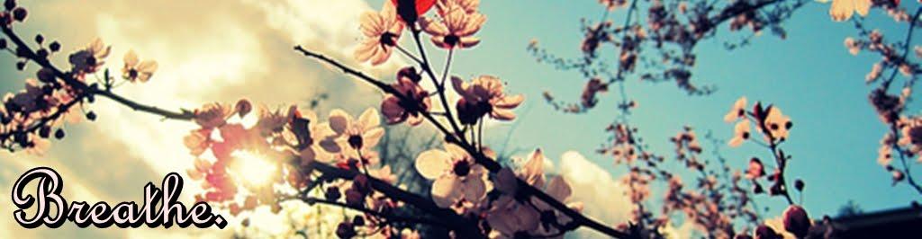 Breathe (Blog Personal).