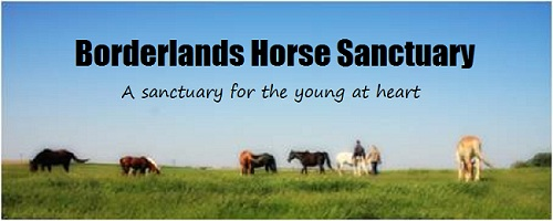 Borderlands Horse Sanctuary