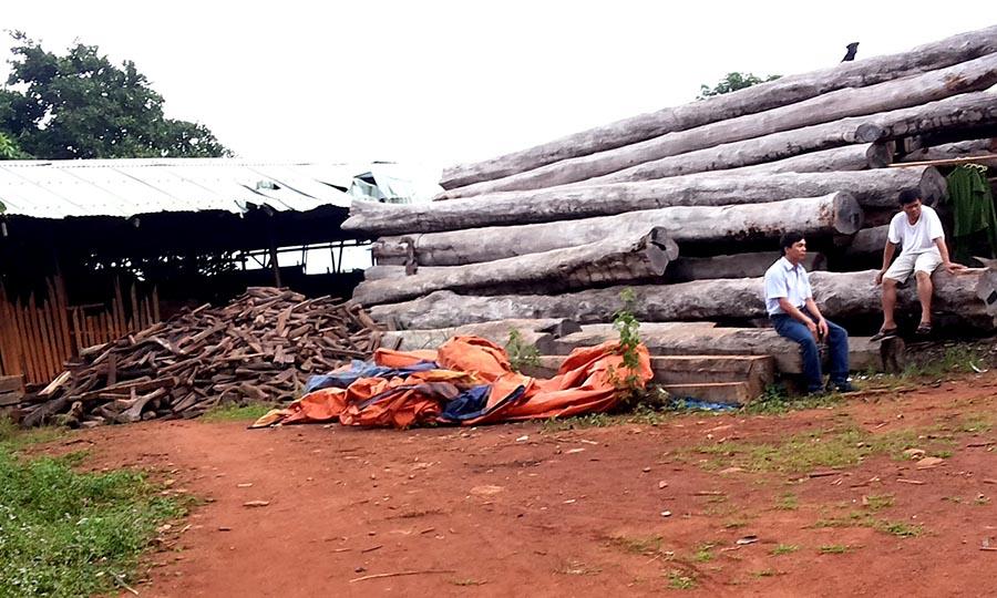 """Vụ Bộ Công an """"đánh úp"""" các xưởng gỗ khủng ở Gia Lai: Chờ kết luận chính thức"""