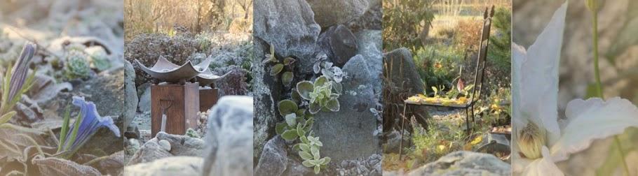 Visningsträdgården Hällans trädgårdsblogg