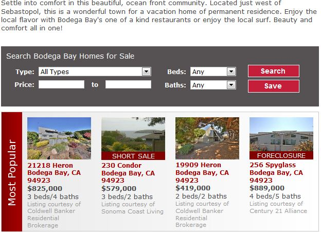 New+Homes+in+Bodega+Bay.JPG