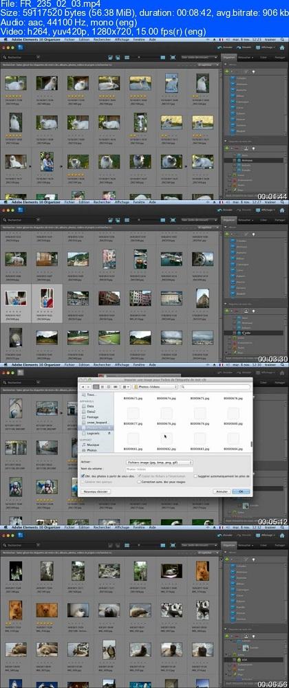 basic image editing in photoshop. 10 Basic photo editing Photoshop Elements