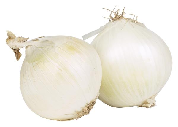 Colors of onions - White Onions