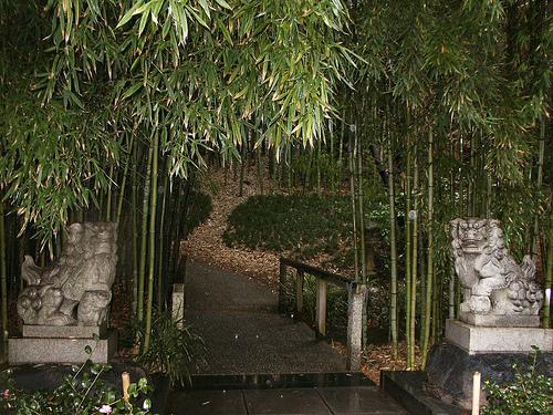 Bamboo Gardens9
