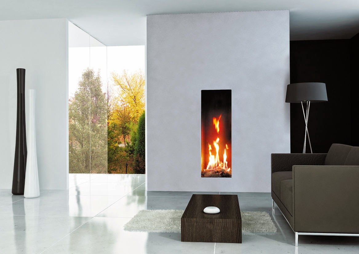 Gas Fireplace Inserts minimalist