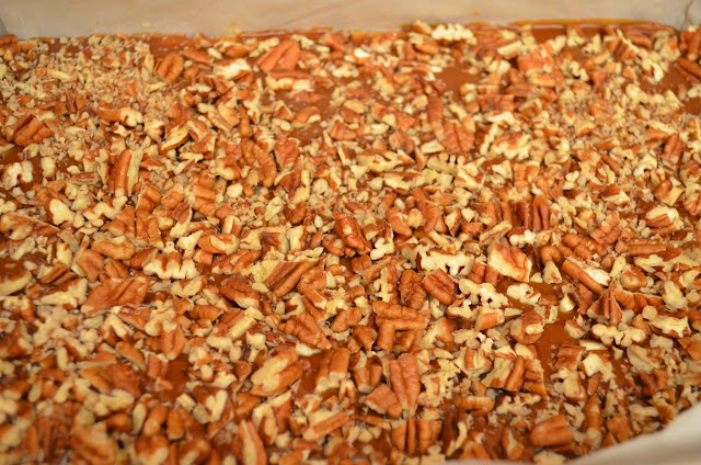 Oatmeal-Turtle-Bars-Pecans.jpg