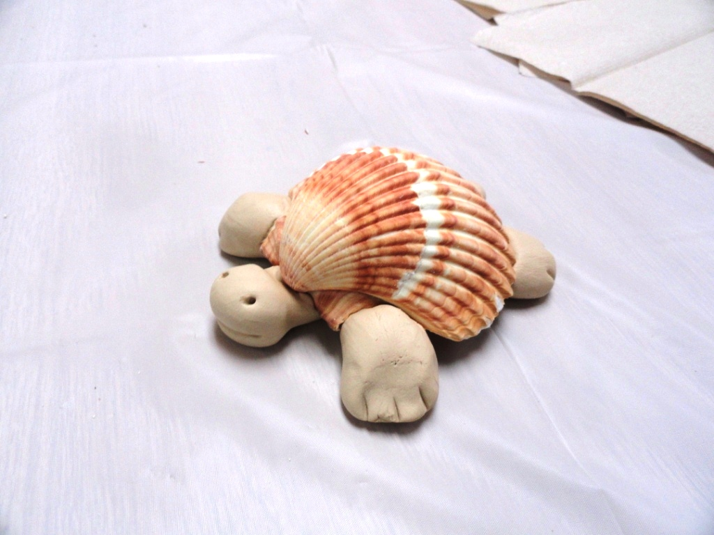 Mary 39 s art spot tall tales a house for hermit crab for What are shells made of