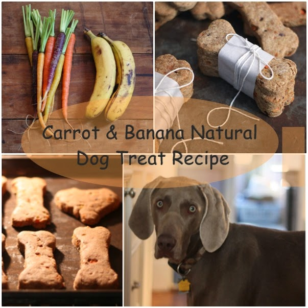 Carrot & Banana Natural Dog Treat Recipe