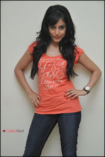 Actress Priya Banerjee Latest Picture Shoot Gallery in Jeans  0010.jpg