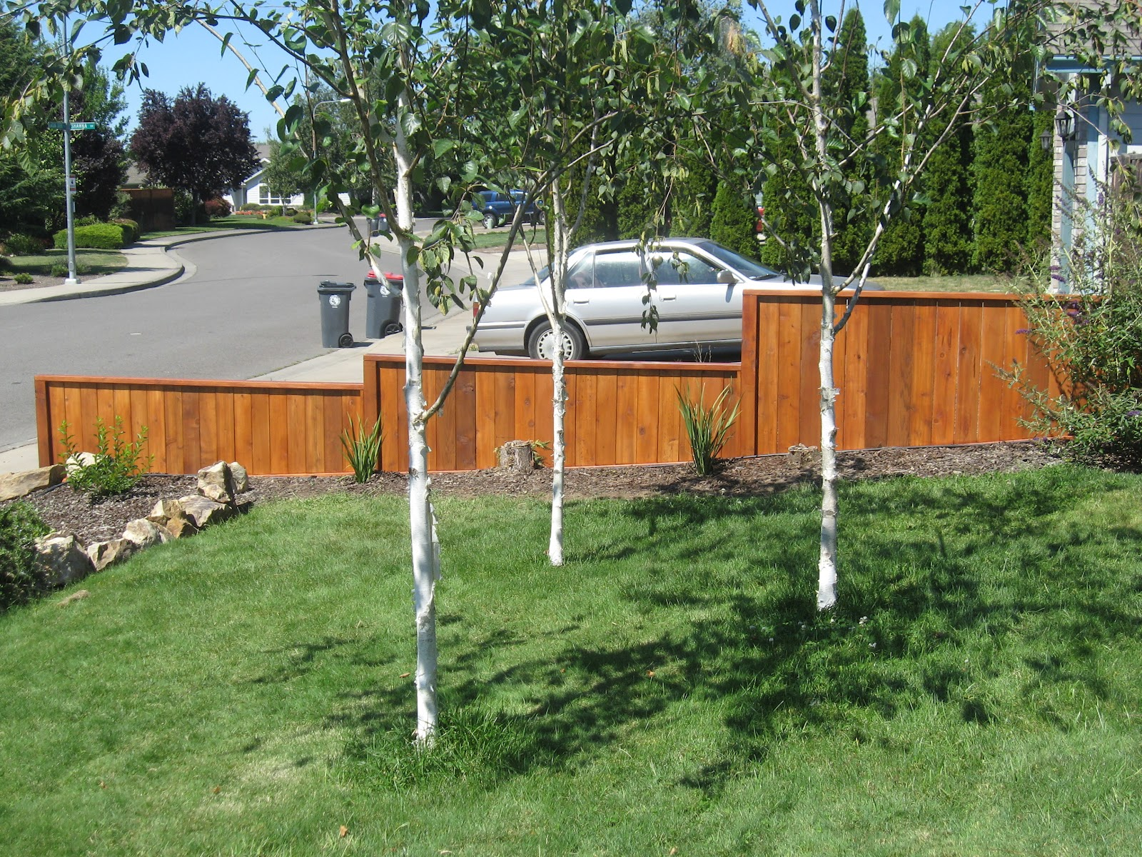 fence next to driveway. a recent project was this cedar fence to accent the clients yard and hide sight of neighbors weeds growing beside their driveway each season next o