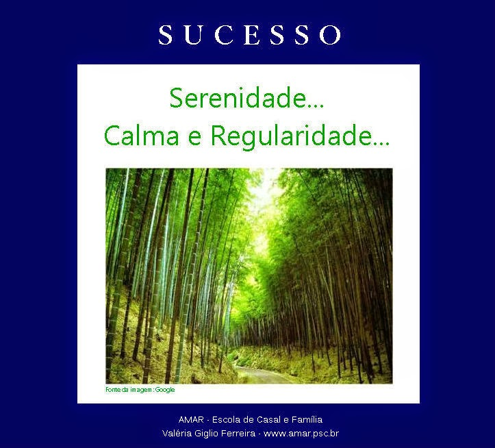 Para obter sucesso...