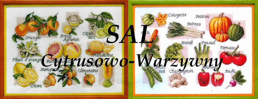 SAL cytrusowo-warzywny