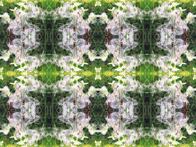 Kaleidoscope pattern photo collage - tips editing artistic photos
