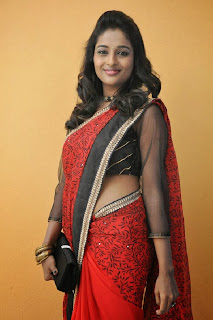 Actress Amitha Rao Pictures in Saree at Chandamama Kathalu Movie Press Meet 0024