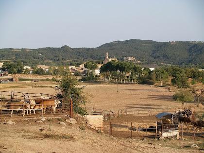 Vista de Sant Boi de Lluçanès des de les masies de l'Oliver i Perenoguera